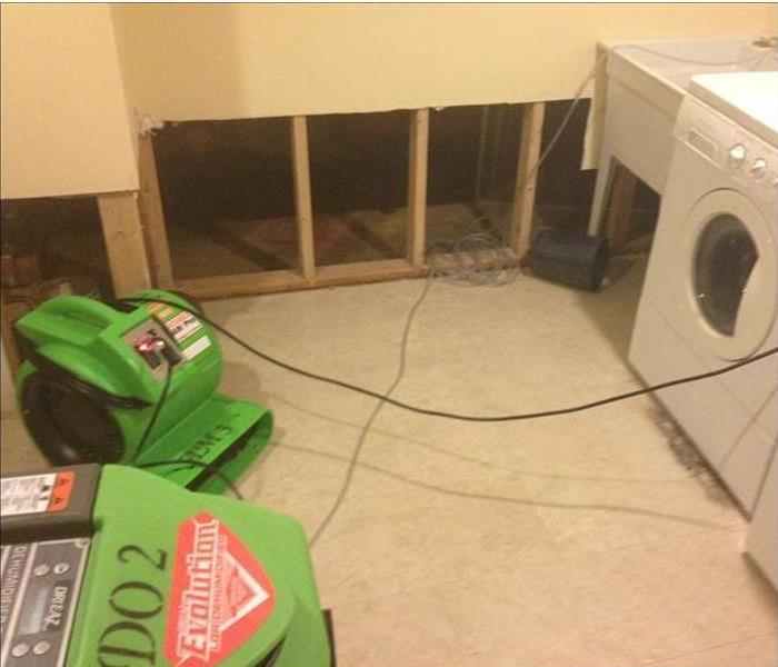 Mold Patches in a Tallahassee Home After