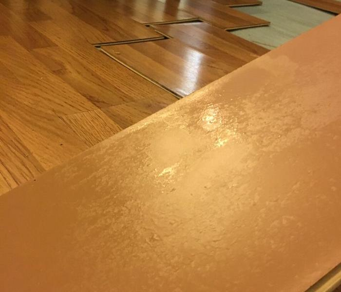 Water Damaged Laminate Floor – Lamonia Home