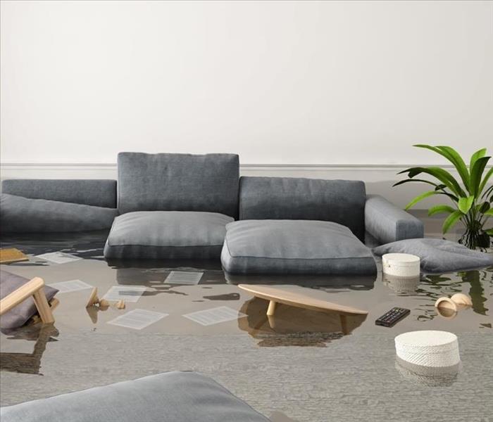grey couch in water