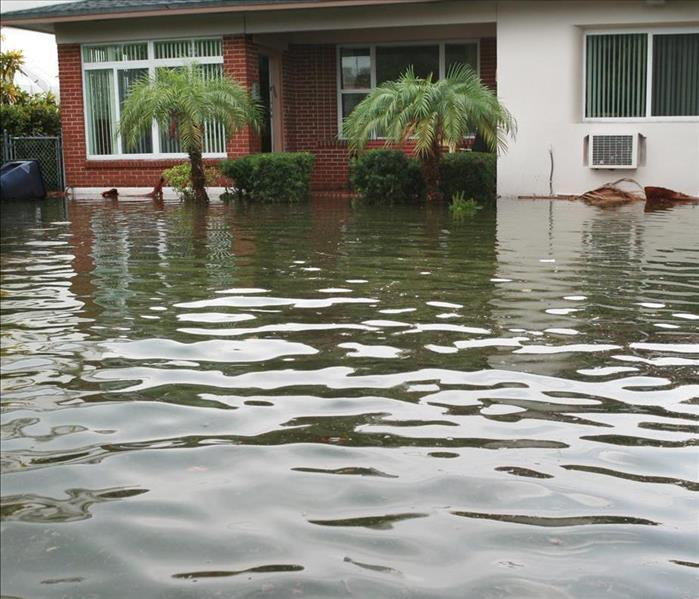 Water Damage Finding A Solution To Water Damage In Your Tallahassee Area Home