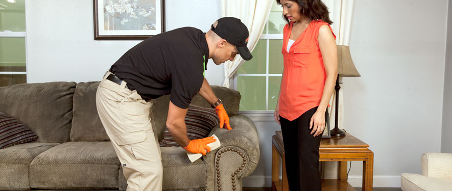 Tallahassee, FL carpet upholstery cleaning